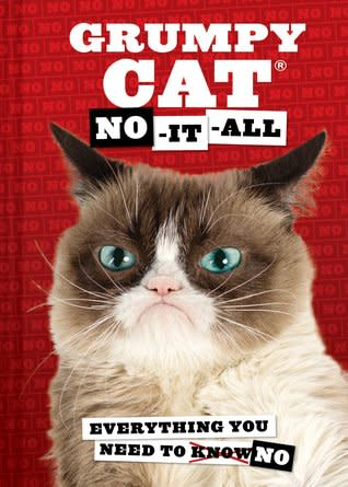 Grumpy Cat No It All Everything You Need To