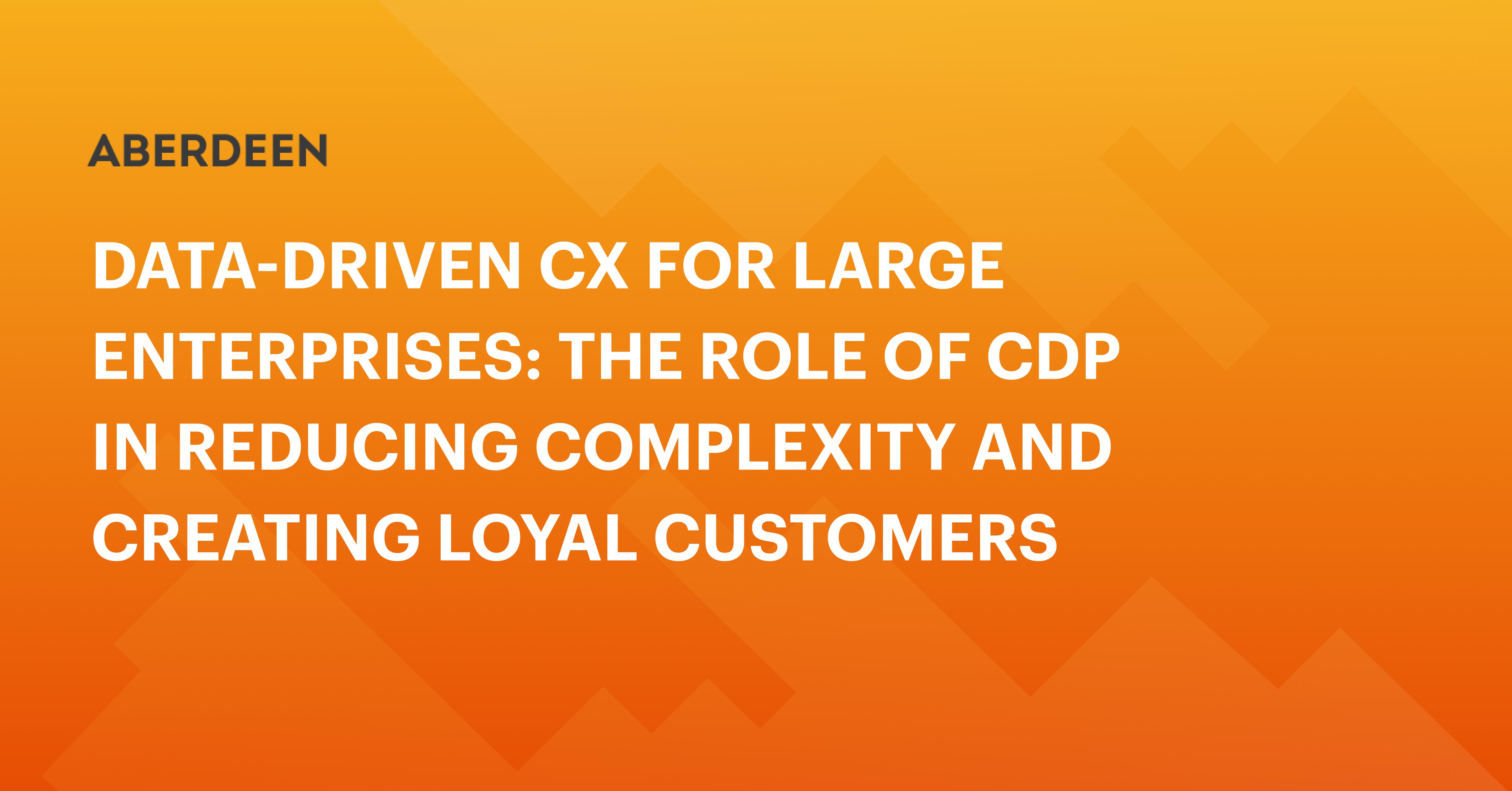 CDP对大型企业的作用