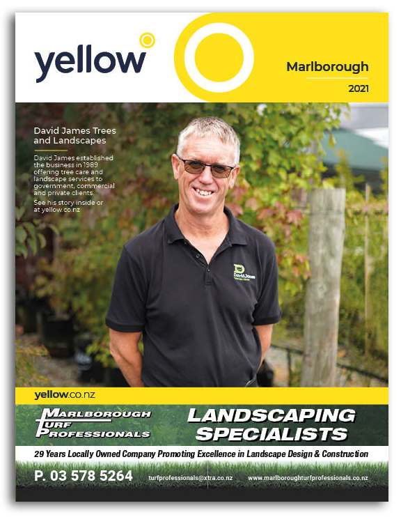 Marlborough Yellow Book Cover Image