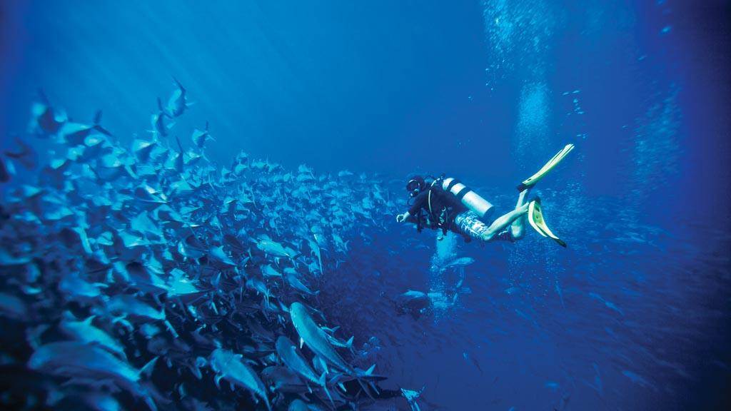 Los Cabos Mexico All Inclusive Vacation Deals Sunwing Ca