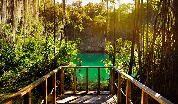 Deck overlooking a cenote in a cave