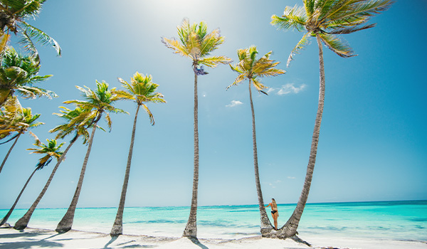Woman leaning against a palm tree on a beautiful beach