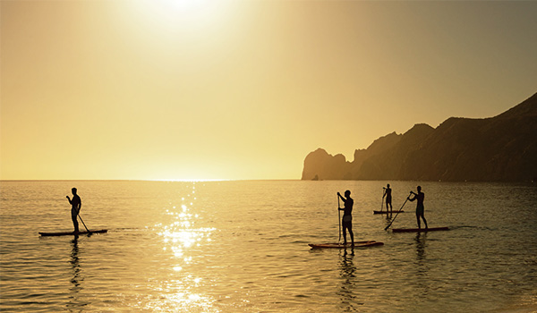 Several people paddle boarding along the shore at sunset