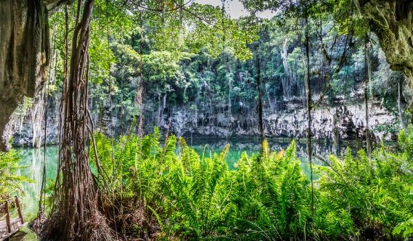 Las Ondas Indigenous Cenote