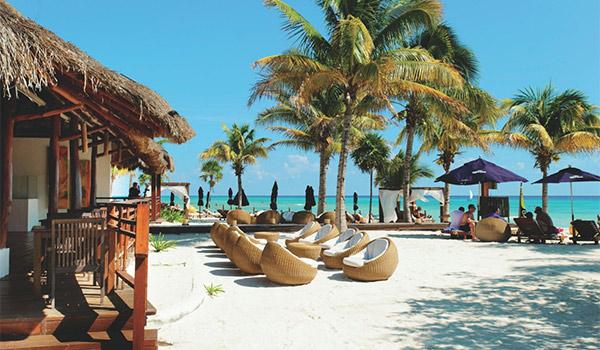 Beach lounge area with shady palm trees