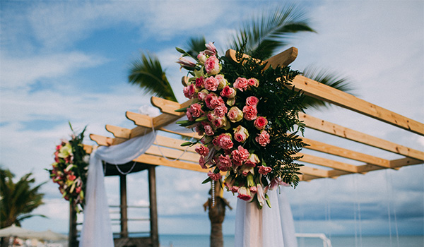 Gazebo covered in flowers and lush greenery on the beach
