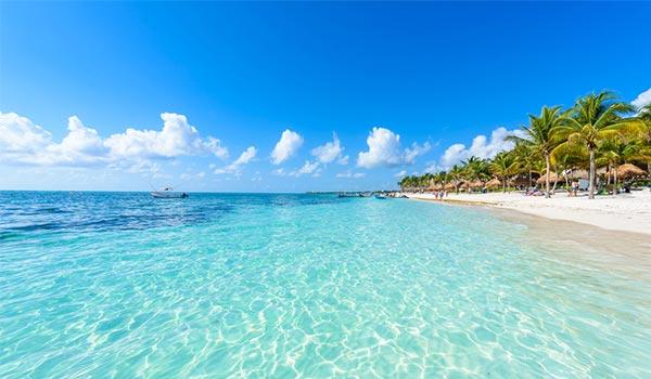 Eaux cristallines bordant une plage immaculée parsemée de palmiers