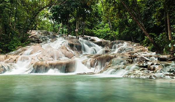 Waterfall with rushing cascades in a lush forest