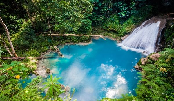 Calm pool and small waterfall surrounded by lush jungle landscapes