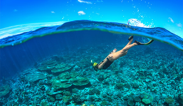 Underwater view of a person snorkelling above a coral reef