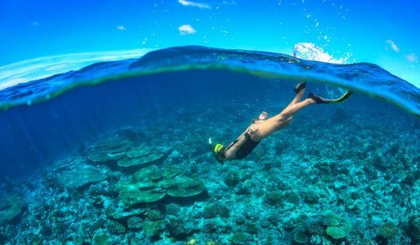 Femme plongeant avec tuba au-dessus d'un récif corallien