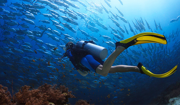 Scuba diving in bright blue waters surrounded by schools of fish
