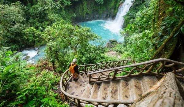 Man walking down the stairs towards a jungle waterfall