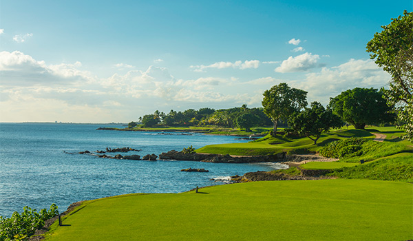 Golf course overlooking the ocean with lush trees