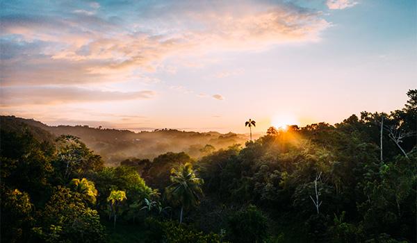 Paysages de campagne jamaïcaine recouverte de collines, au coucher du soleil