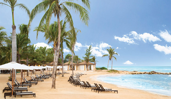 Pristine white-sand beach with turquoise waters lined with palm trees