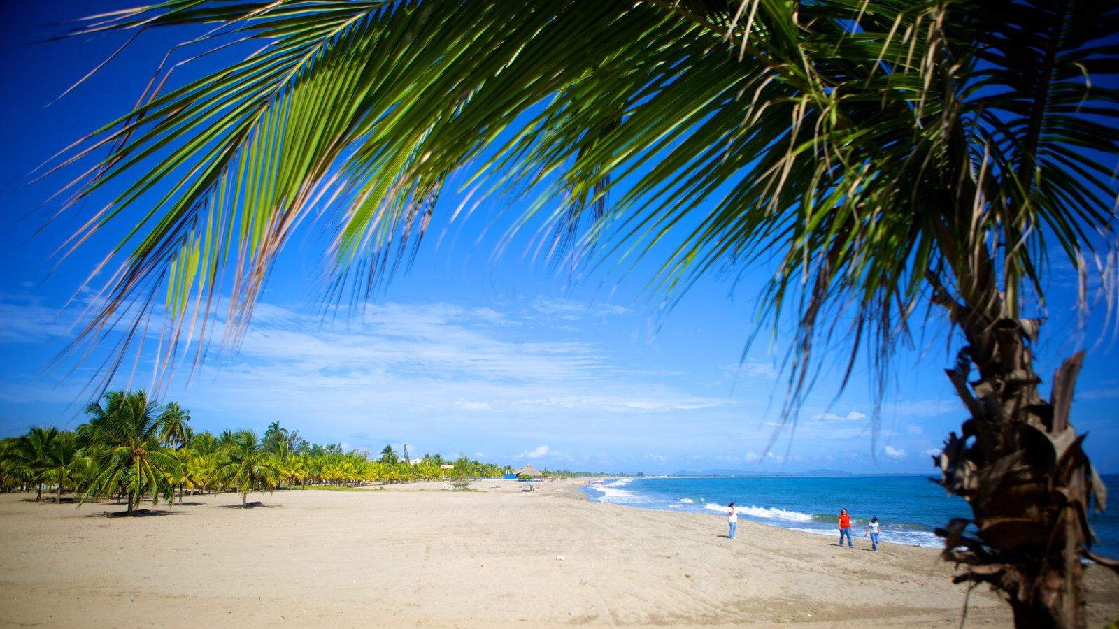Tela Honduras All Inclusive Vacation Deals Sunwing Ca