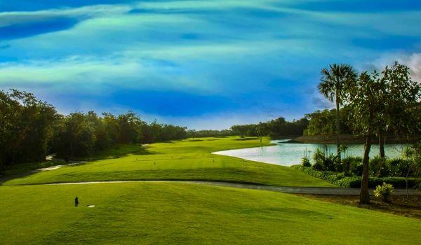 Green fairways of a golf course