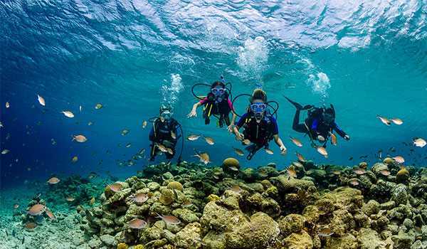 Four people scuba diving among tropical fish above a coral reef