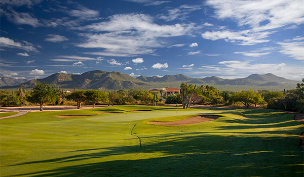 pristine greens on a golf course with mountains in the background