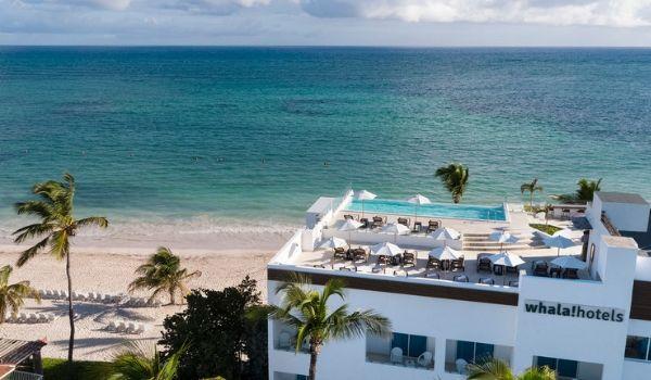 Vue aérienne de la piscine et du bar sur le toit, surplombant l'océan
