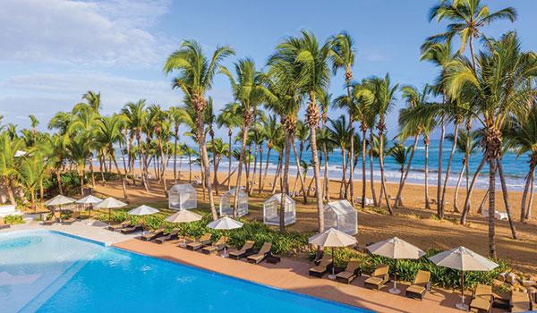 Chaises longues au bord de la piscine surplombant la plage bordée de palmiers