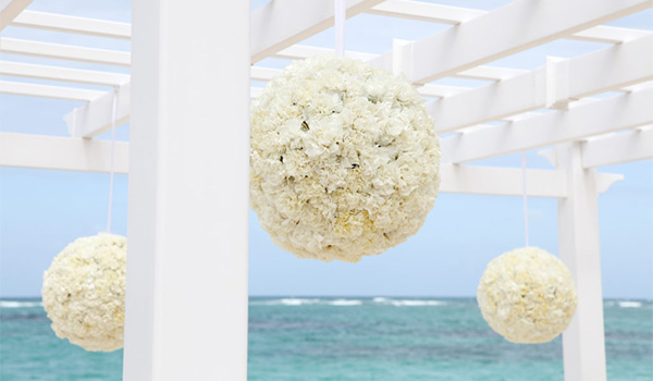 White flowers hanging from a gazebo on the beach