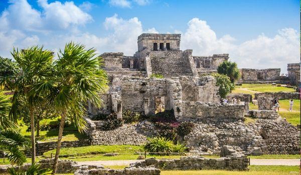 Anciennes ruines maya sur une colline entourée de palmiers
