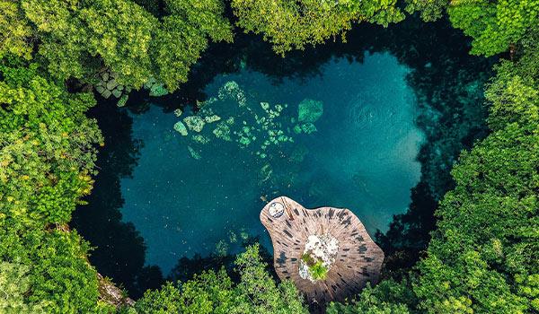 Magnifique cénote entourée de jungle vue des airs