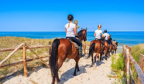 Des personnes se promenant à dos de cheval sur la plage