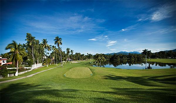 Parcours de golf entouré d'une végétation luxuriante