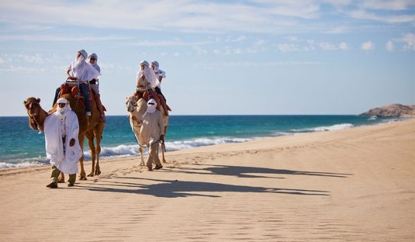 People riding camels across the beach