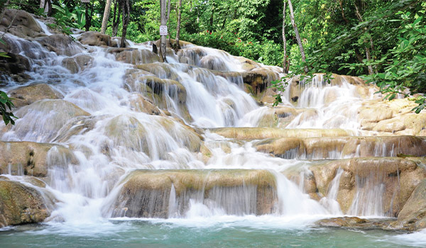 Plusieurs cascades précipitées qui forment un escalier naturel géant entouré de forêt
