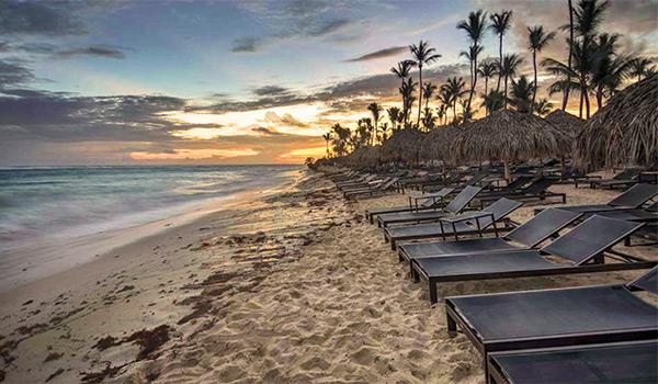 Rangée de chaises longues sur une plage de sable
