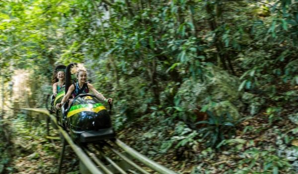 Two girls on a Jamaican bobsled racing through the forest