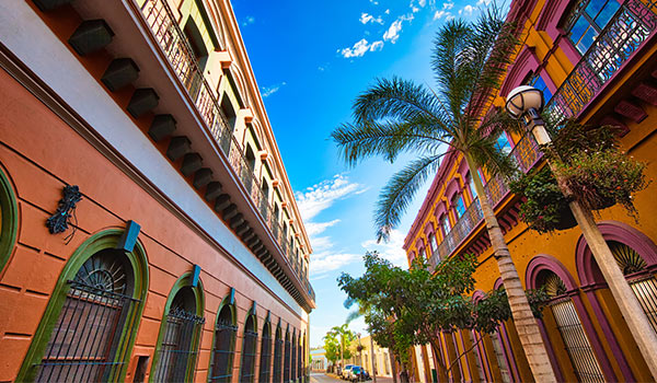 Historic buildings lining the street with palm trees