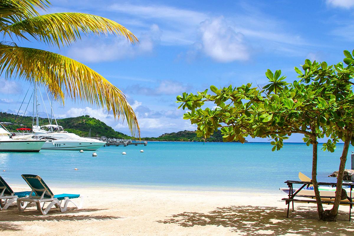 Swim with the Stingrays in Antigua