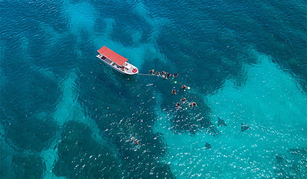 Aerial view of boat and divers swimming near manta rays