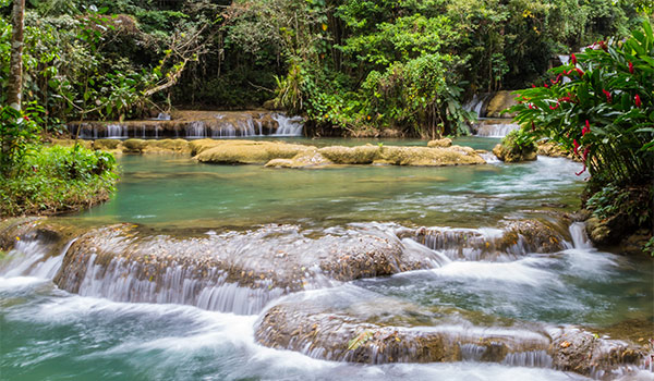 Series of low waterfalls in the jungle