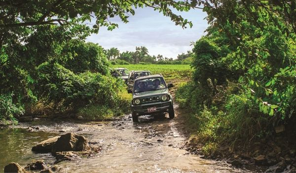 Jeep driving through jungle