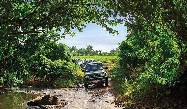 Jeep traversant la jungle