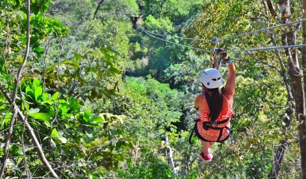 Person ziplining above trees