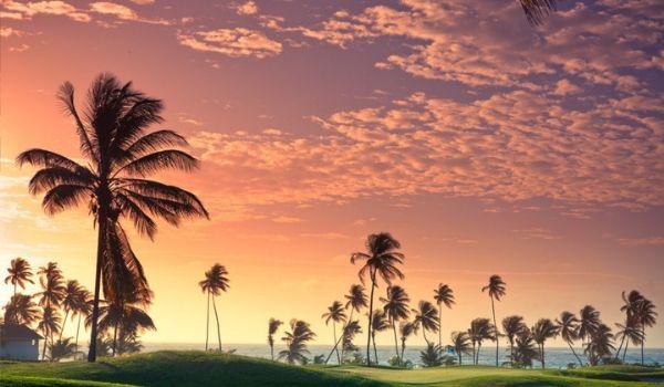 Parcours de golf avec vue sur la côte au coucher du soleil