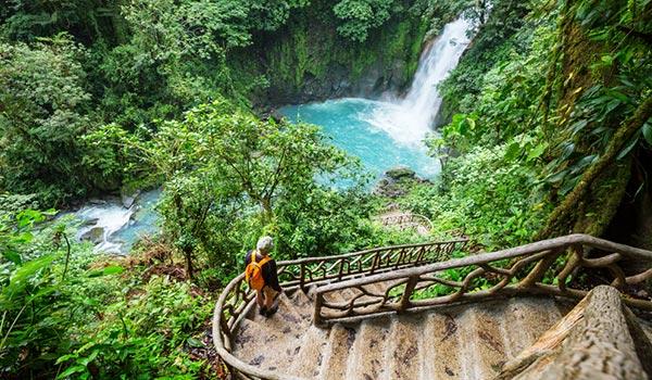 Escaliers montant vers une belle chute d'eau au milieu de la jungle
