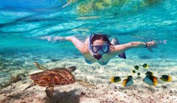 Jeune femme faisant de la plongée avec tuba avec une tortue de mer et des poissons colorés