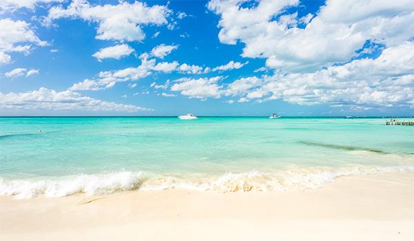 Pristine beach overlooking the ocean