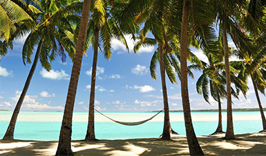 Hammock on a beach surrounded by palm trees