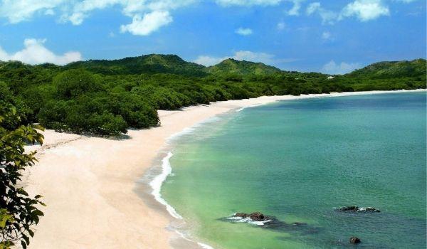 Costa Rican rainforest blending into the beach