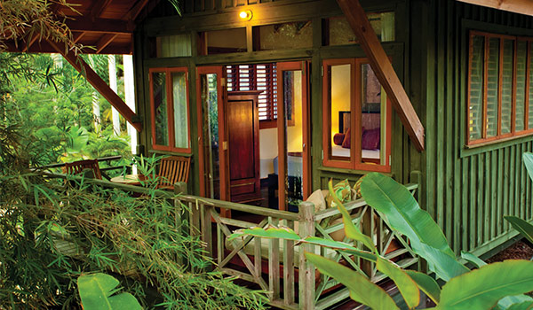 Views of lush jungle from spacious private balcony of treehouse suite