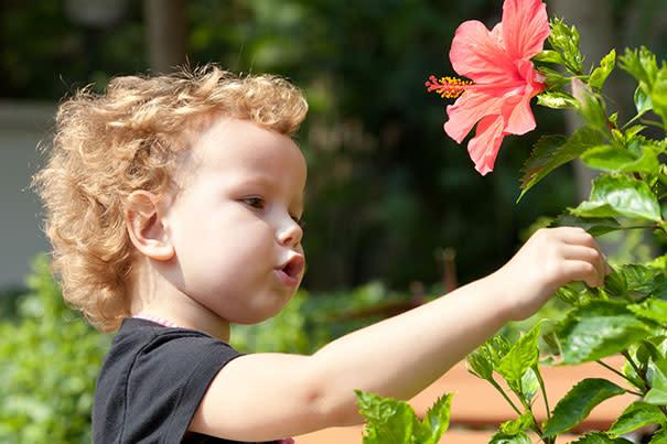 Popular Flower Names For Girls & Boys